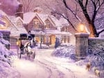 Soft winter glow