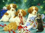 ..Puppies & Kittens..