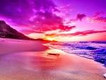 SUNSET at NORTH SEASHORE