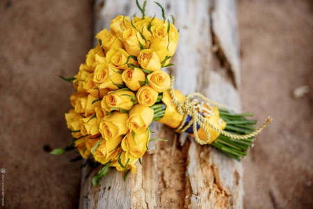 Bouquet - yellow roses, flowers, wedding day, bouquet