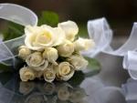 Exquisite white rose