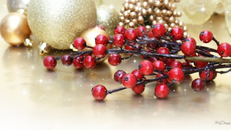 Holiday Berries and Balls