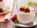 Raspberry Yoghurt Dessert