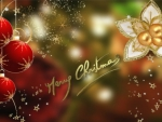 ~*~ Merry Christmas ~*~