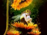 ~Sunflower Dreams~