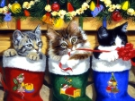 Kittens & Christmas