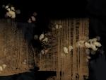 Dark Woods II