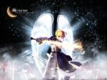 saber wings