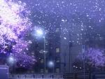 HM: Night Blossom