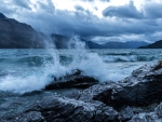 Ocean Waves in New Zealand