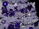 Purple Christmas Shine