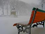 Snowing_Park