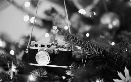 Christmas Tree Ornament ~ For Zuri - tree, photography, christmas, black, camera, white, ornament