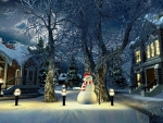 Snowman's Night