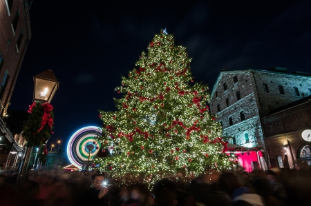 Christmas Celebration - ornaments, colorful, bows, event, lights, city, bright, star, lamp, christmas, buildings, celebration, town, post, sky, tree, festive