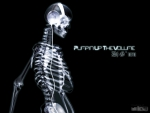 Skeleton DJ