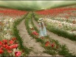 Among the poppy fields