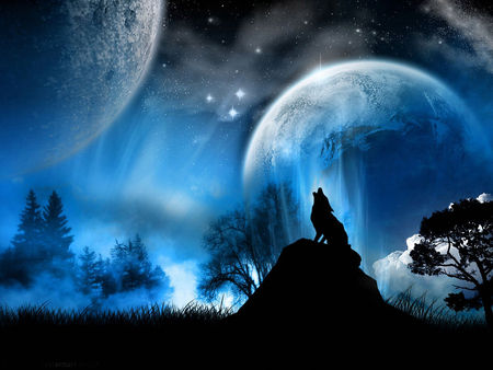 Wolf'n'Moon - peaceful, wolfnmoon lake-like reflection, dark, star, dogs, animals, winter, full moon, night, wonderland, howl, anma, dark art, grace, cool, reflection, drawing, wolves, art, black, people, wild, widescreen, painting, loup, abstract, dog, howling, moon, loups, moons, cliff, fantasy art, landscape, wolfnmoon, blue, vamp, gorgeous, under a moon, trees, nature, j, lobo, beauty, animal, fantasy, stars, wolf, darkness, wolf n moon perfect, multiple moons, digital art, calming