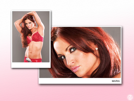 MARIA - kanellis, divas, girls, entertainment, playboy, hot, red, wwe, sexy, maria, diva, girl, ravishing