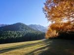 Four Season Valley