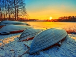 Winter Sunset