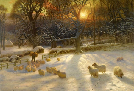 Winter sunset over the countryside - dusk, beautiful, sunset, twilight, outdoors, cold, countryside, farm, frosty, roy, painting, shadows, gorgeous, art, war, warm, winter, sheep, snow, nature, white
