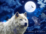 Dream of the White Wolf