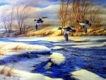 ★Drifting in Winter★