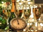 Celebrating New Year 2015!