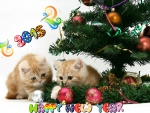 *** Happy New Year ***