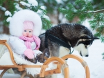 Baby and Alaskan Malamute