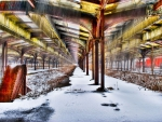 Abandoned Train Shed