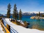 Tahoe Trail in Winter