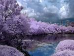 Beautiful Sky over Japanese Landscape