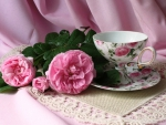 Pink roses  and  cup