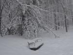 It was a long winter