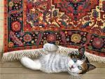 Tapestry Cat F1C