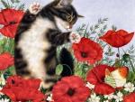 Poppies and Kitten F1