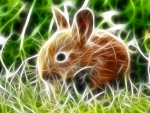 Little- Rabbit-Fractal