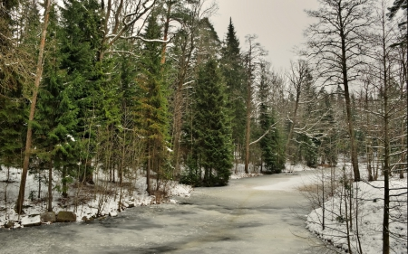 River - beautiful, trees, winter, river