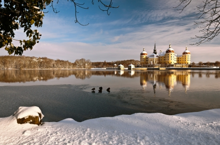 Winter in Germany - moritzburg castle, snow, reflection, lake, winter
