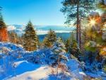 Beautiful winter in lake Tahoe