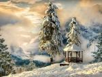 Splendid Winter Scenery