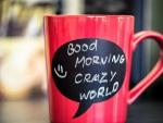 Good Morning Crazy World