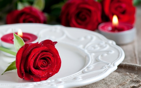 Romantic Moments ♥ - red roses, moments, romantic, love, candles