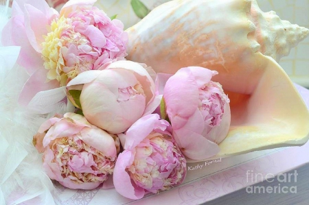 ♥Peonies Impression♥ - pretty, lovely, romantic, holiday, colors, love four seasons, beautiful, conch, softness beauty, peonies, sweet, Valentines, love, flowers, beloved valentines, pink