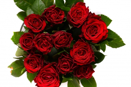 Love Bouquet - red roses, wonderful, bouquet, bunch, fresh, love