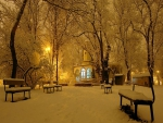 Winter Evening in the Park