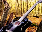 Autumn with guitar
