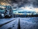 Railroad Track in Winter